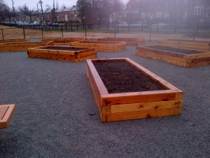 Community Garden at Turkey Thicket
